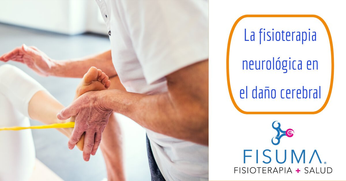 La fisioterapia neurológica en el daño cerebral